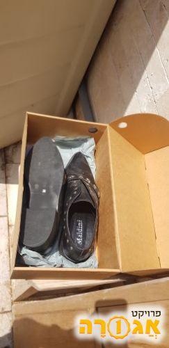 נעלי אישה 36