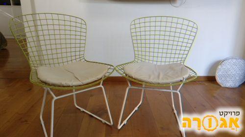 שני כסאות