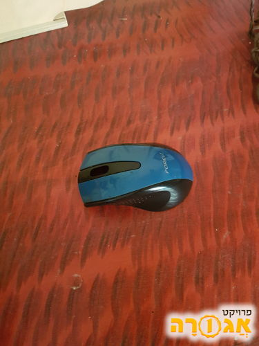 עכבר מחשב