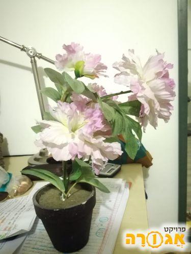 פרחים מפלסטיק לנוי