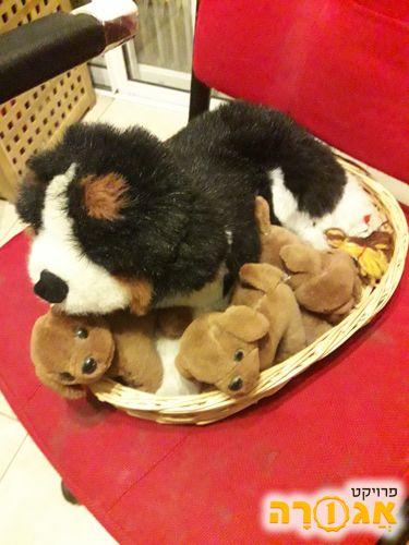 סלסלה עם כלבה וגורים